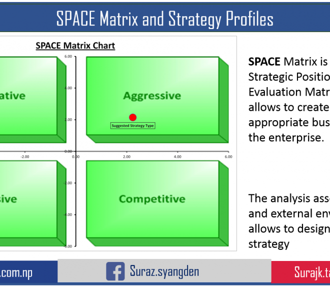 The SPACE Matrix and its implications